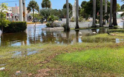 Key West waters: Will sea level rise shut down the Keys?
