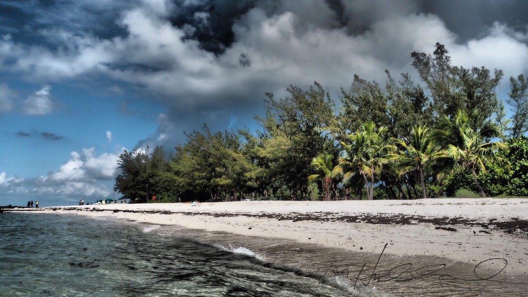 Martha Hubbard | Key West chef and photographer