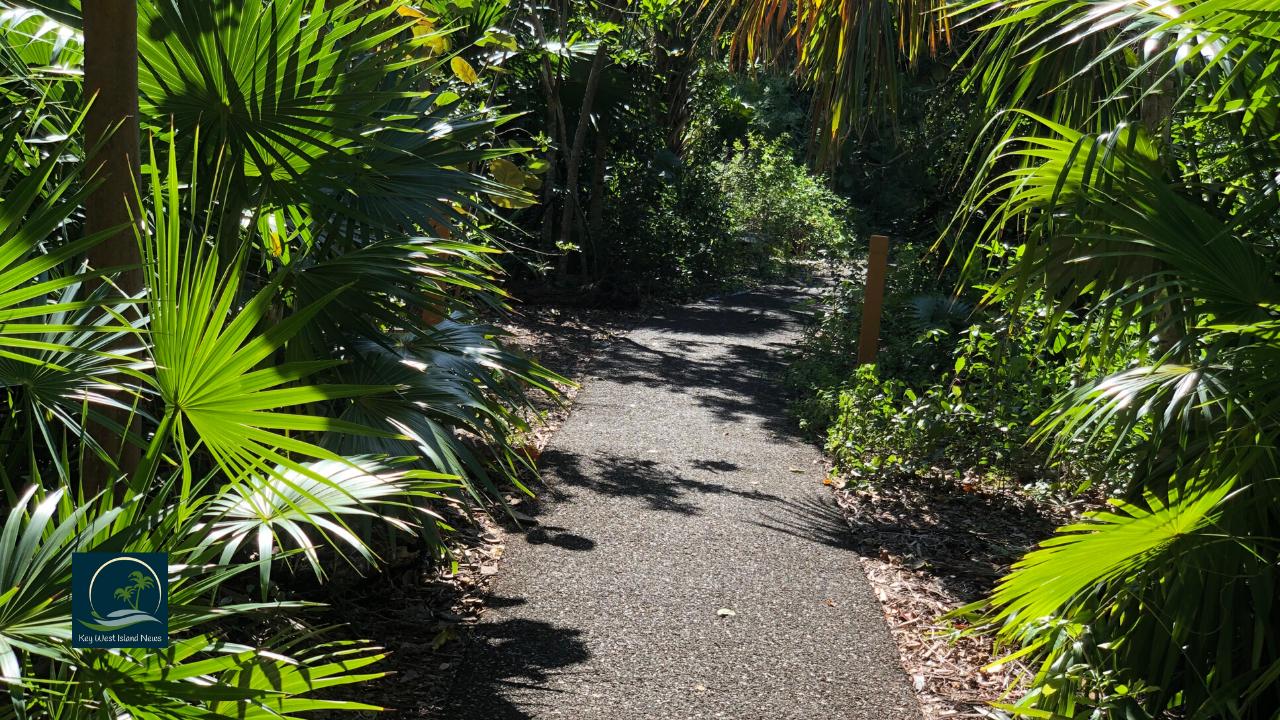 Key West Tropilca Forest Walkway
